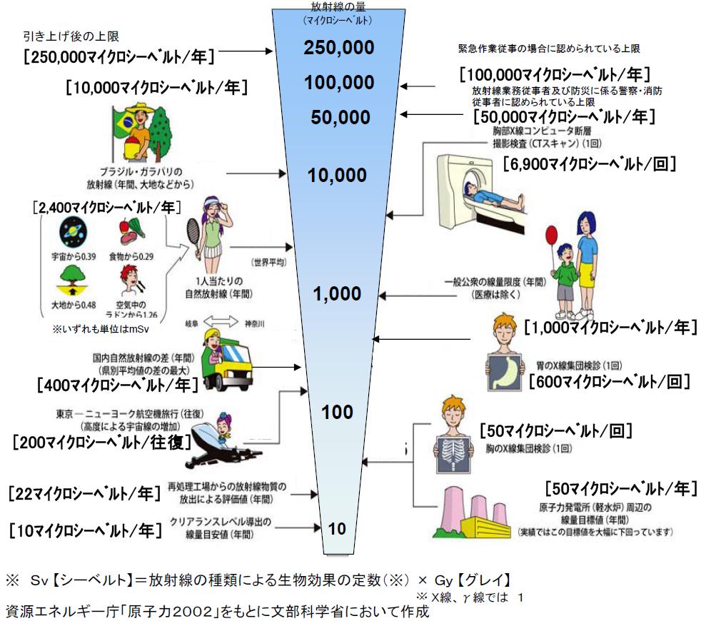 図解・日常生活と放射線