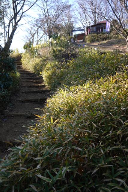 高尾山頂上からもダイヤモンド富士は見れますが、もみじ台という場所からの景色を確認したく、その場所へ10分ほど歩く。