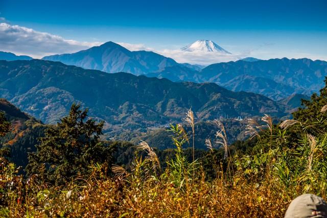 「もみじ台」から見た富士山