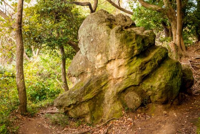 天園ハイキングコースの十王岩