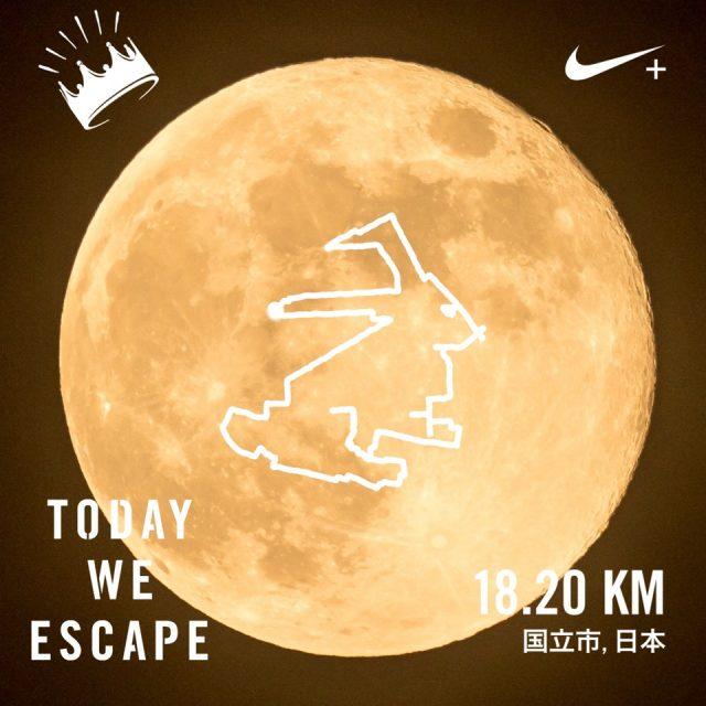 十五夜お月さんに兎