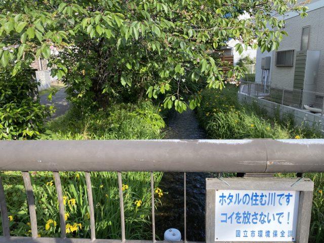 羽衣公園から流れる矢川