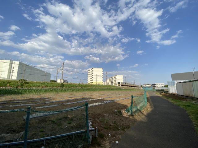 矢川駅近くの畑道