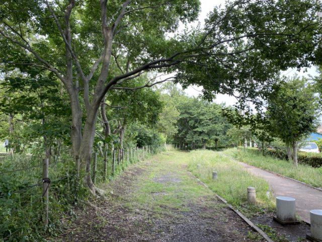立川市羽衣公園