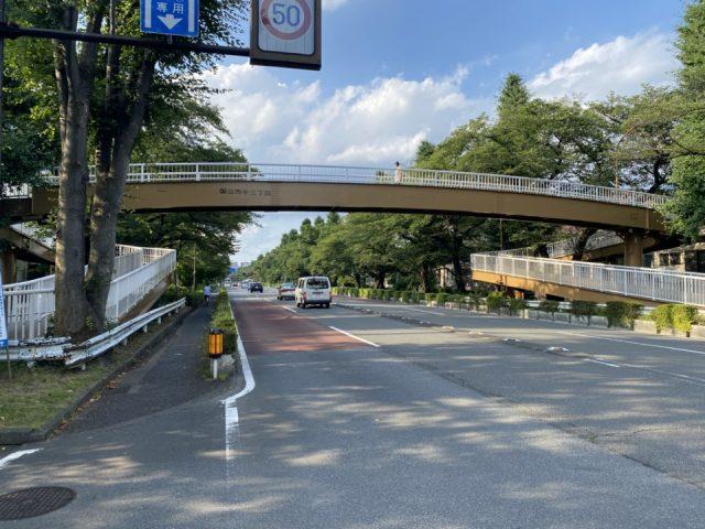 大学通り歩道橋