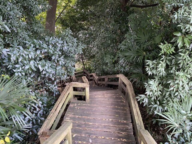 ママ下湧き水公園の階段