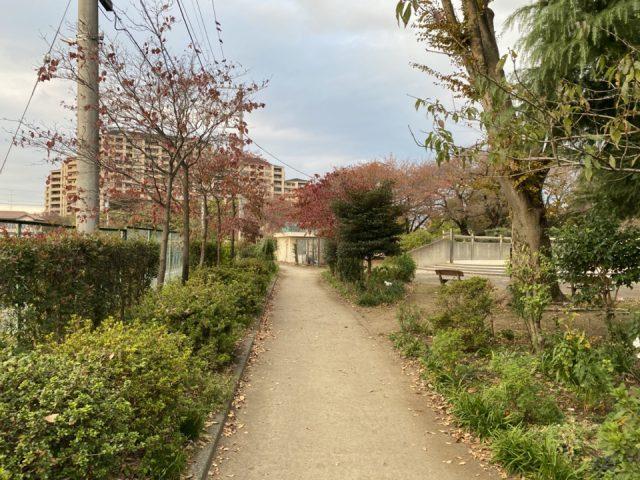 矢川上公園の小道