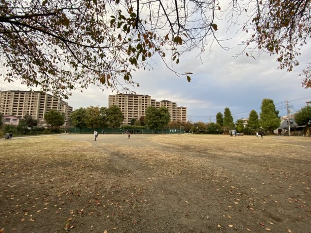 矢川上公園の広場