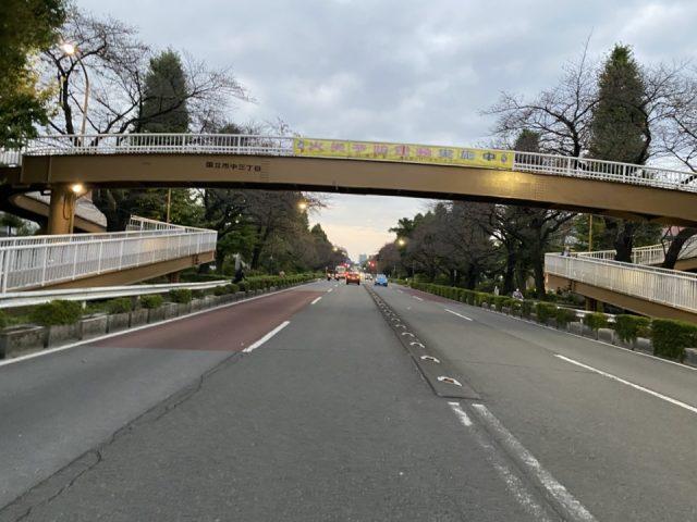 大学通りの歩道橋