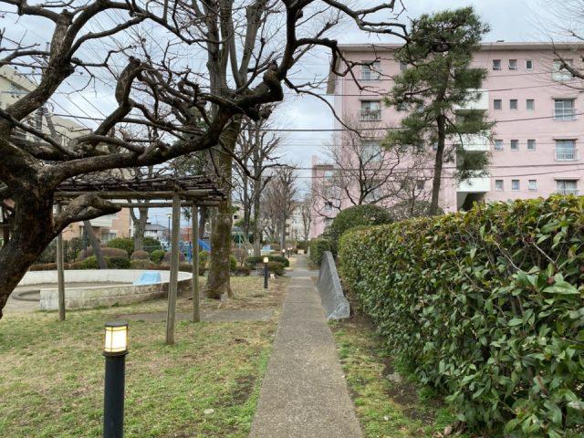 富士見台第一団地のピンクの建物